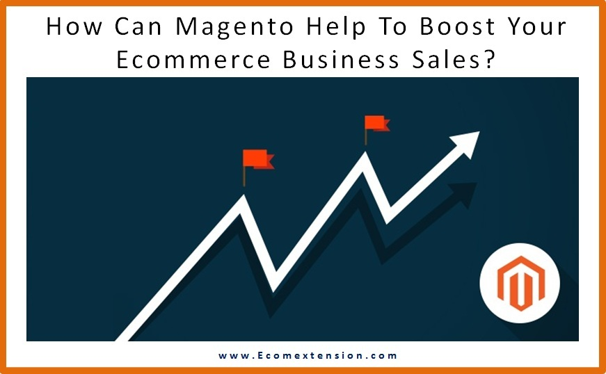 Magento Ecommerce Business - Ecomextension