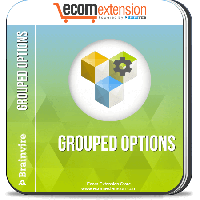 Magento Grouped Options Extension